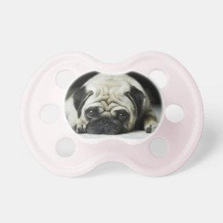Pug Puppy pacifier