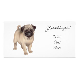 Pug Puppy Photo Card
