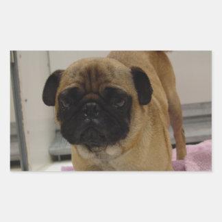 pug puppy.png rectangular sticker