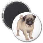 Pug Puppy Round Magnet