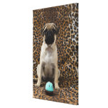 Pug puppy sitting against animal print 2 canvas print