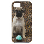Pug puppy sitting against animal print 2 iPhone 5 cases