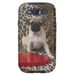 Pug puppy sitting against animal print galaxy s3 cases