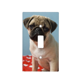 Pug puppy sitting on bed light switch cover