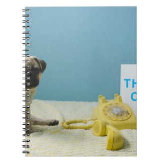 Pug puppy sitting on bed next to phone and notebook