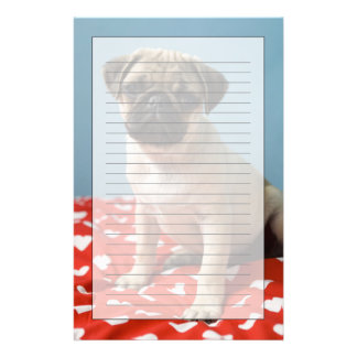 Pug puppy sitting on bed stationery