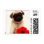 Pug puppy stamps