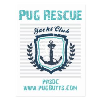 Pug Rescue of San Diego Co. Yacht Club Postcard