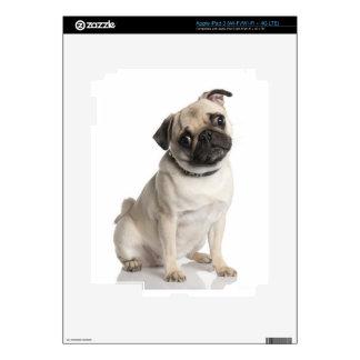 Pug Skins For iPad 3