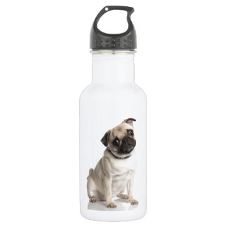 Pug Stainless Steel Water Bottle