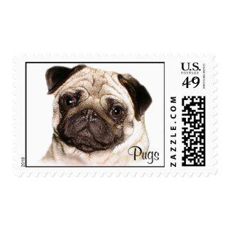 Pug Stamps