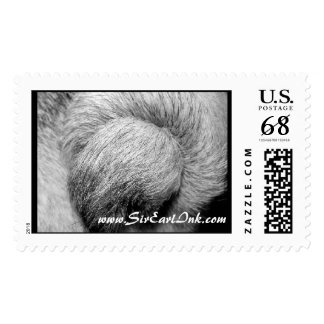Pug Tails_5x5_BW_sei_jac_July2007 copy, WWW.SIR... Postage Stamp