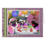 pugs, chinese, crested, tea, party, fun, friends,