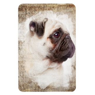 Pug Vintage Portrait Magnet