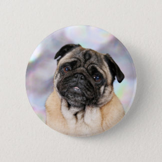 Pug - Willy Button