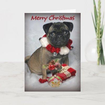 pugs  merry  christmas