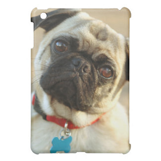 Pug with a Questioning Expression iPad Mini Cases