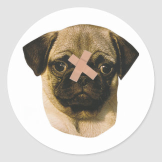Pug With Band-Aid Classic Round Sticker