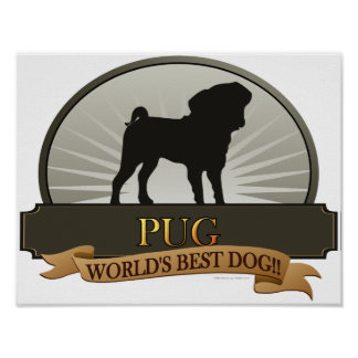 Pug - World's Best Dog! Posters