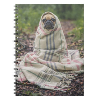 Pug wrapped in blanket notebook