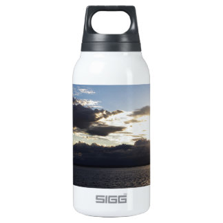Puget Sound SIGG Thermo 0.3L Insulated Bottle