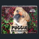 "Puggle! 2019 Calendar<br><div class=""desc"">This is the official Puggle! 2019 Calendar,  benefiting ASPCA! Photos are chosen by the 37, 000  fans of the official Puggle! page on Facebook. *LIKE* us to get regular updates of adorable puggle pictures in your newsfeed daily! www.facebook.com/PuggleDog</div>"