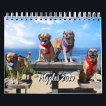 "PUGGLE - 2019 CALENDAR<br><div class=""desc"">4 puggles,  Bug,  Buddy,  Lola and Otis make their own calendar showcasing their adventures.</div>"