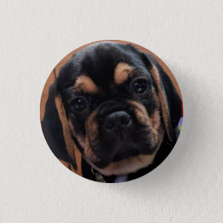 Puggle Button