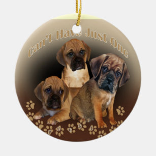 Puggle Lover Gifts on Zazzle