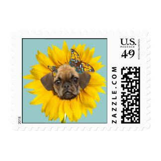 puggle face in a daiisy postage