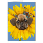 Puggle Face In A Daisy Cards