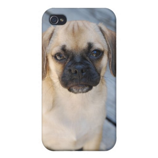 Puggle i- 4  covers for iPhone 4