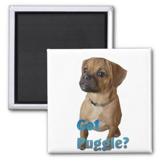 Puggle Lovers Gifts Magnet