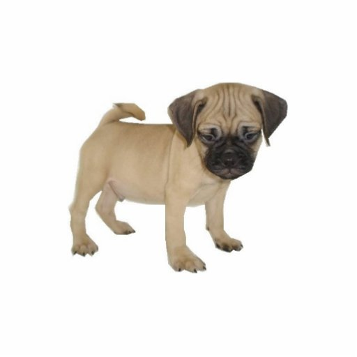 Puggle Magnet Cut Out