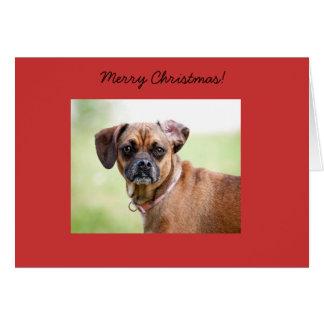 Puggle Merry Christmas Card