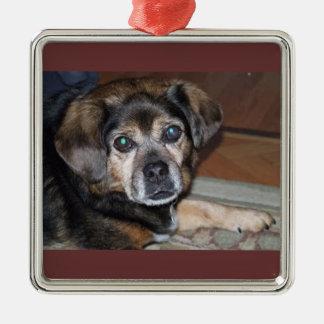 Puggle Ornament