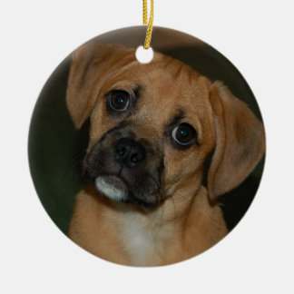 Puggle ornament 2