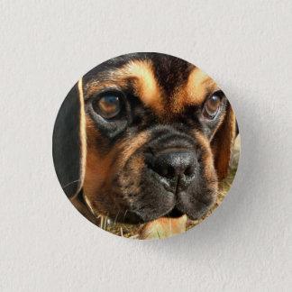 Puggle Pinback Button