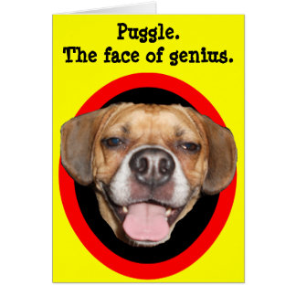 Puggle. The face of genius. Card