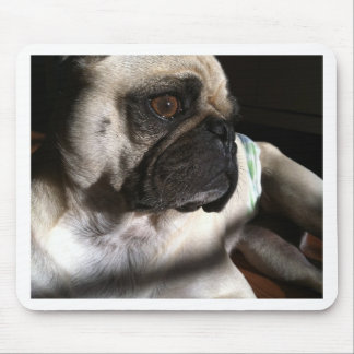 Puggy for your thoughts... mouse pad