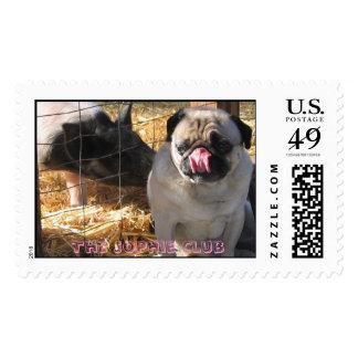 Puglet 'n Piglet Postage Stamps
