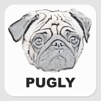 PUGLY the cute and ugly pug Square Sticker