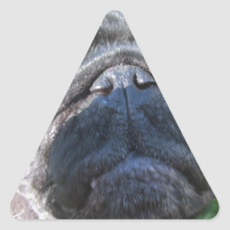 pugmug pegatina triangular