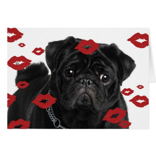Pugs and Kisses Greeting Cards