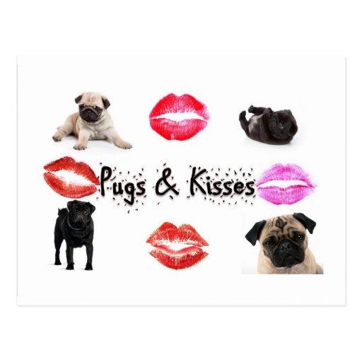 Pugs and Kisses Postcard