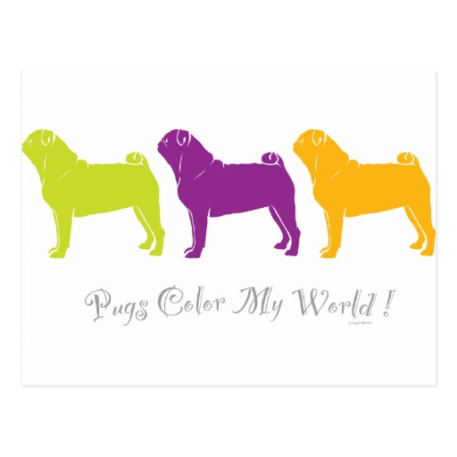 Pugs Color My World Post Cards