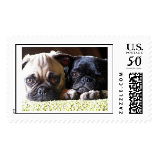 Pugs in Love Postage Stamp