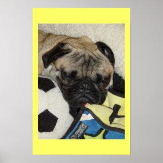 Pug's life poster