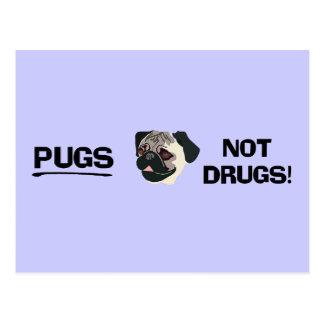 Pugs Not Drugs Postcard