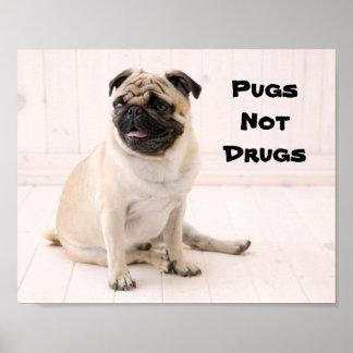 Pugs Not Drugs Poster